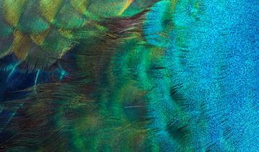 Smulders Textiel